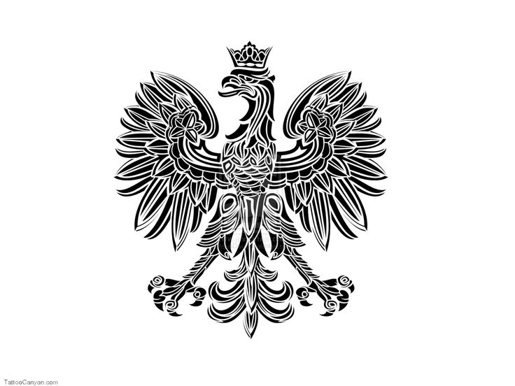 Polish Tribal Eagle Tattoo 20130618 6568 Semar88com picture 16506 #tribalbacksidetattoos