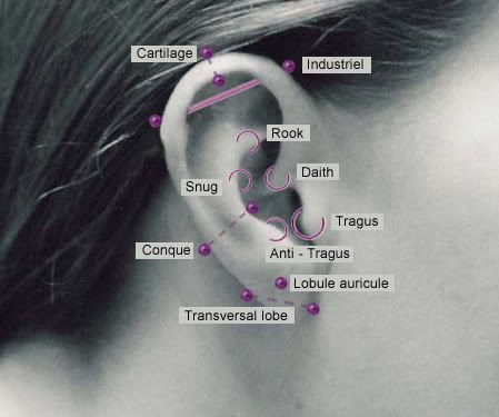 ear piercing diagram