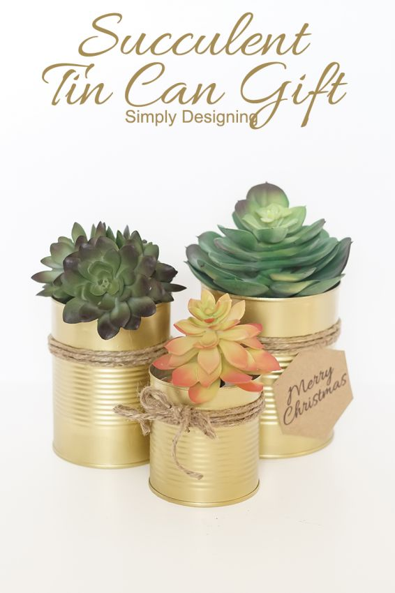 A succulent in a gilded tin can makes a nice gift, but they're also fun to keep in groupings around the porch or patio.