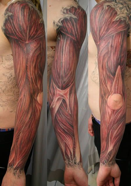 arm musce tattoo; I'm so intrigued by these tattoos , I blame it for all those anatomy hours needed for nursing!!