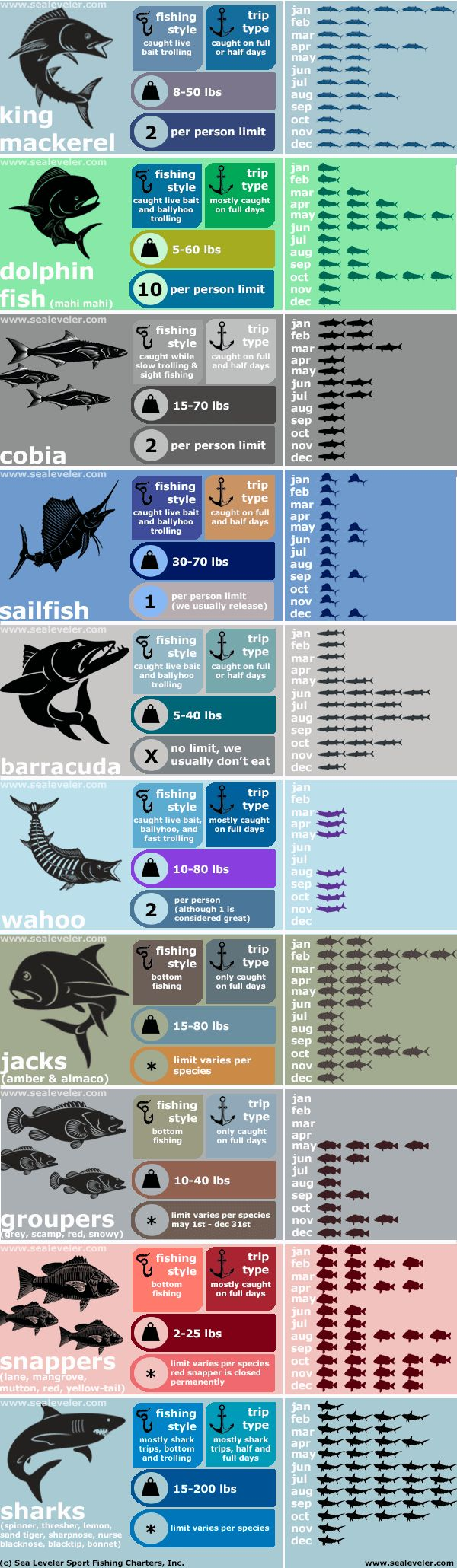 Sea Leveler Sport Fishing Charters Infographic- Fish Caught by month and type of charter trip