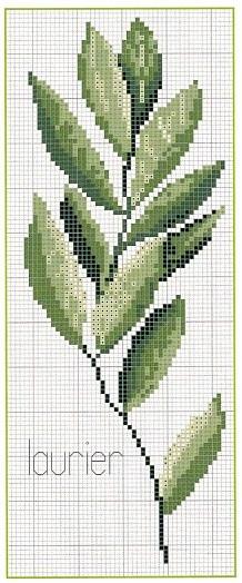 folha verde ponto X
