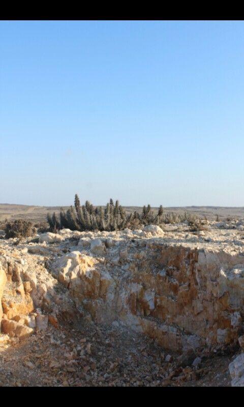 Mina de cuarzo situada entre Punta de Choros y Chañaral de Aceituno.