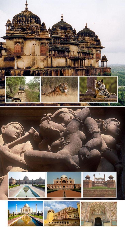 Golden Triangle Tour14n/15d  - Tours From Delhi - Custom made Private Guided Tours in India - http://toursfromdelhi.com/golden-triangle-tour-package-14n15d-delhi-jaipur-ranthambore-bharatpur-agra-orchha-khajuraho-bandhavgarh-mumbai/