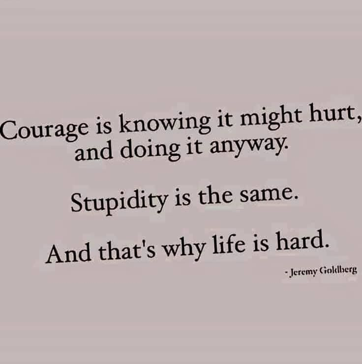 Courage Is Knowing It Might Hurt And Doing It Anyway Stupidity Is The Same And That Is Why Life Is Hard Jeremy Funny Quotes Inspirational Quotes Words