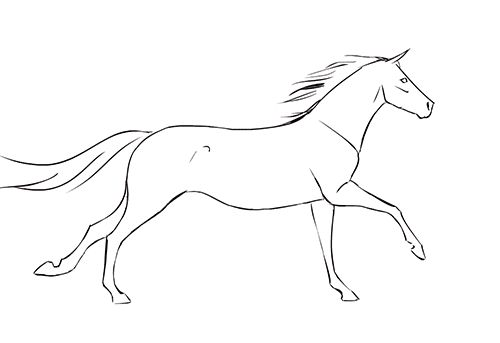 Beautiful Animated Horse Gifs at Best Animations