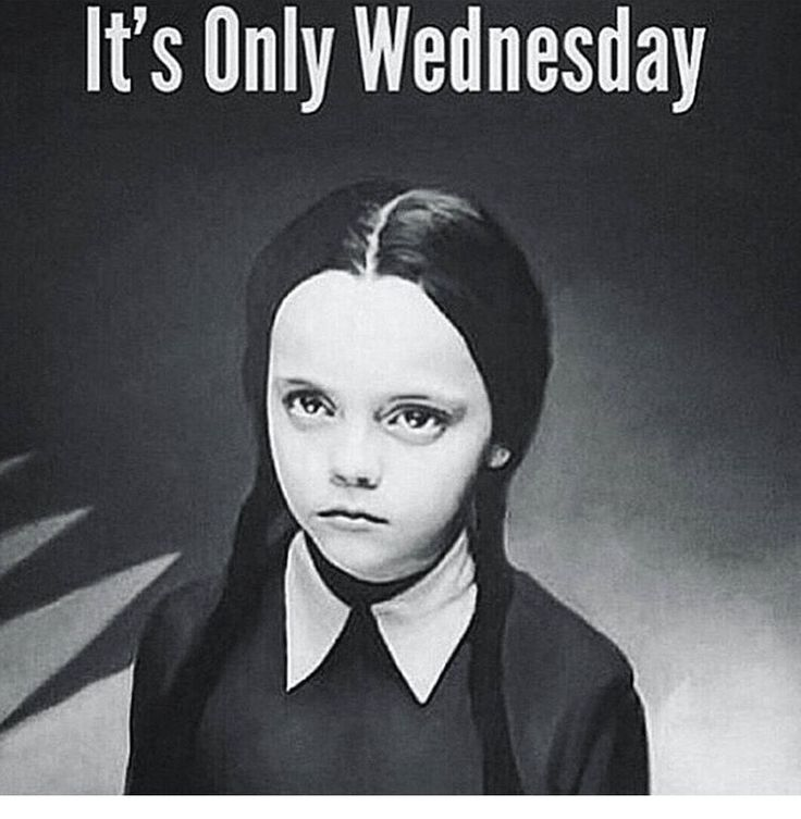 53 best Wednesday Memes images on Pinterest | Good morning ...
