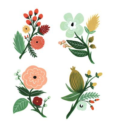 #flower #illustration - looks like Rifle Paper or something similar.
