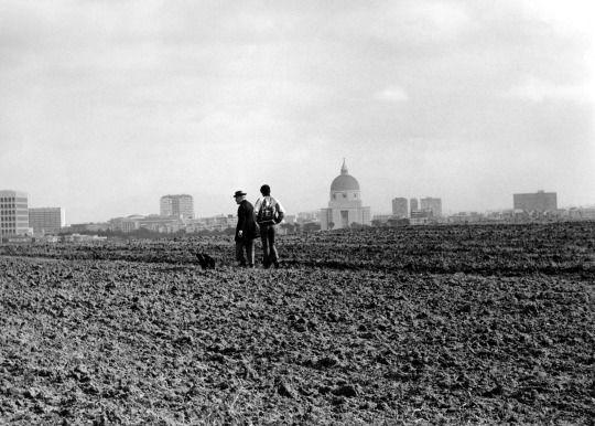 Pier Paolo Pasolini, Uccellacci e uccellini (Hawks and Sparrows), film still, 1966