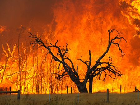 The bushfire crisis in Victoria isAustralia's worst-ever bushfire disaster. It's also Australia'sworst natural disaster in 110 years. Here's a list of othernatural disasters.