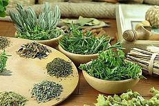 Травы для сердца: три рецепта из календулы, боярышника и мелиссы.