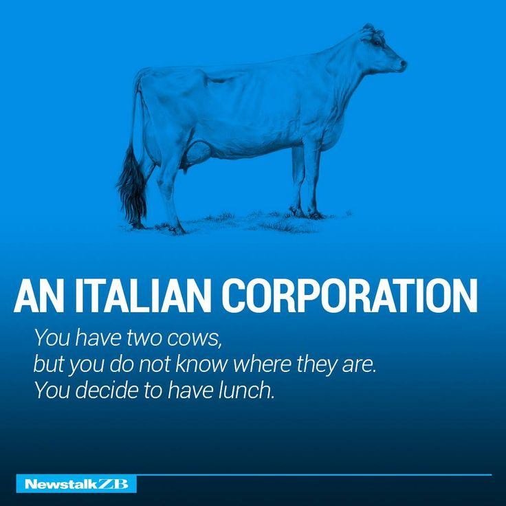 News Talk ZB. You have 2 cows: example of an Italian Corporation.