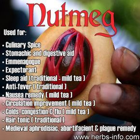 ❤Nutmeg is a popular (and formerly notorious) spice that is derived from the fruit (specifically the seeds) of the nutmeg tree - Myristica fragrans; a large evergreen tree native to the Banda Islands in Indonesia.❤
