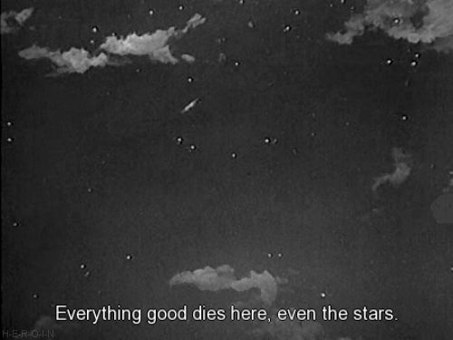 Everything good dies here, even the stars