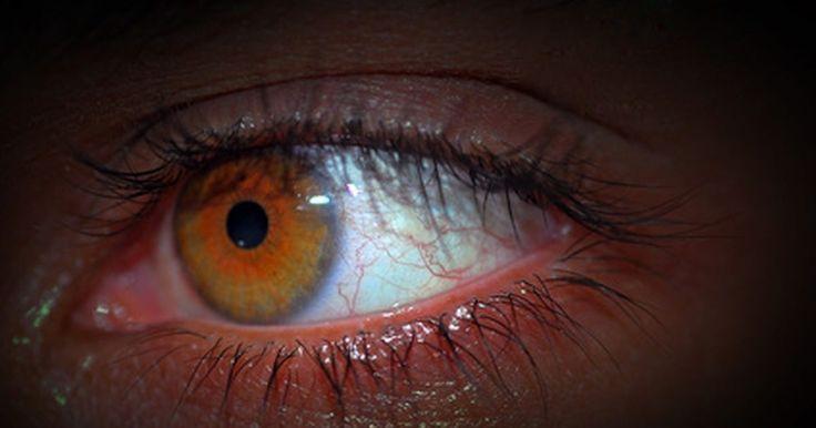 Como destacar olhos cor de avelã. A descrição de olhos de avelã varia muito. Alguns dizem que são olhos verde-dourados, outros dizem que a cor é mais um castanho com toques dourados. De qualquer maneira, a cor é muito atraente, com um brilho que parece mudar com o ambiente. A maquiagem e roupas podem ajudar muito a destacar seus olhos de avelã, acentuando sua beleza e clareando ...