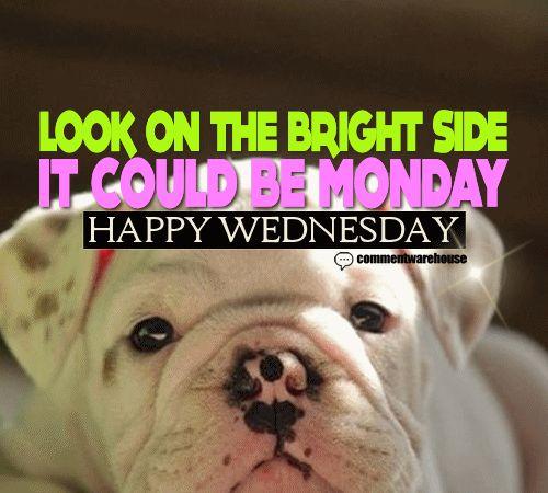 25+ best Happy Wednesday Quotes on Pinterest | Wednesday ...  25+ best Happy ...