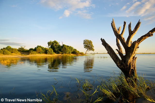 Caprivi is wet, green and alive!