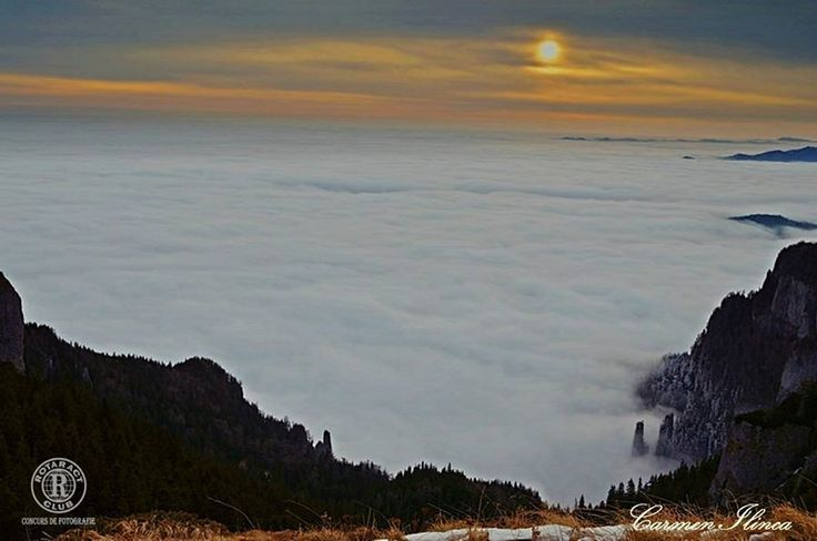 Titlu: Mare alpină la răsărit pe Ceahlău Descriere/locație: Masivul Ceahlau Fotograf: Carmen Ungureanu