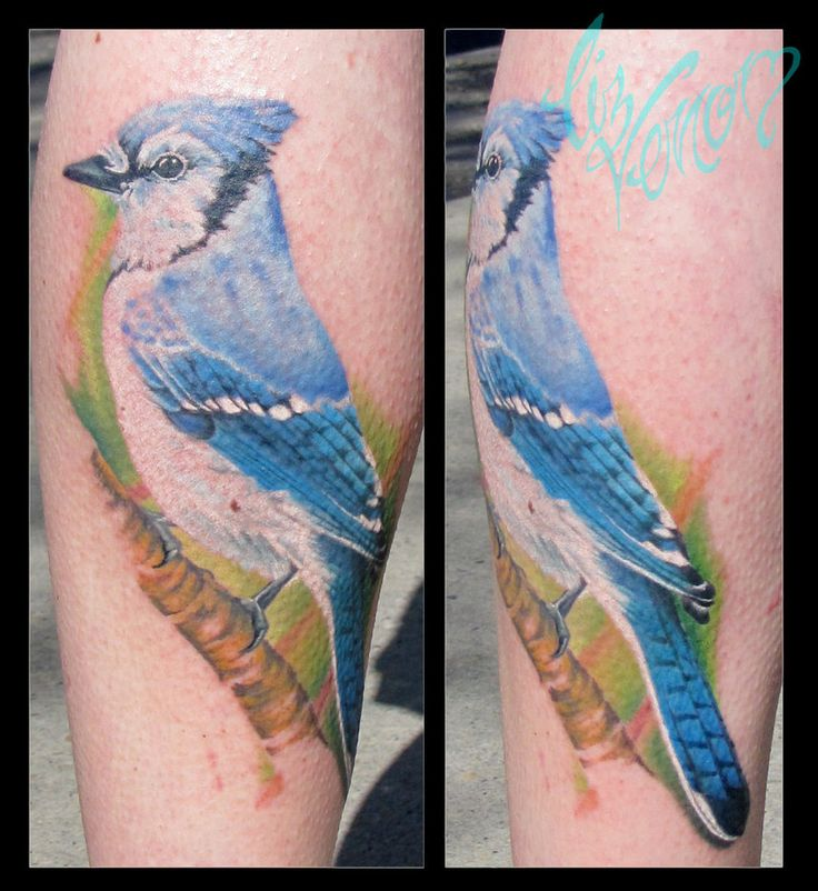 bluejay tattoo by Liz Venom from Bombshell Tattoo, Edmonton, Canada