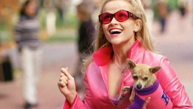 Elle Woods podría regresar a la gran pantalla en Legalmente Rubia 3