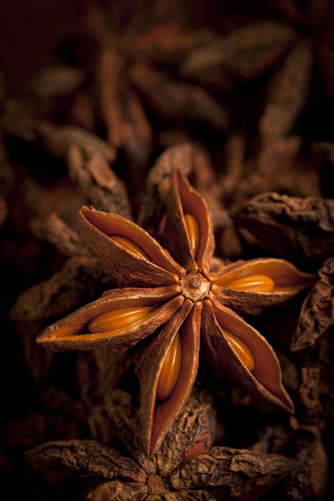 """""""star anise small"""" by Jerry Deutsch on Flickr - This is a star anise showing seeds on a pile of star anise."""