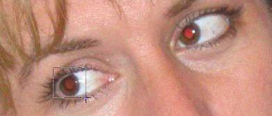 » Photoshop-Tutorials.nl - Rode ogen verwijderen / herstellen