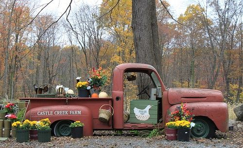 antique trucks used as a farm stand!