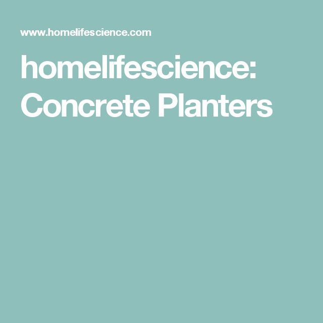 homelifescience: Concrete Planters