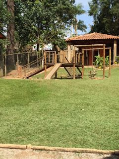 Curtindo Kids: Petzoo - Caucaia do Alto