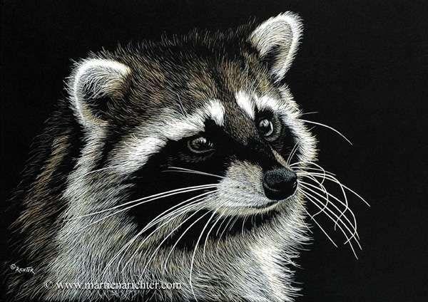 Martiena Richter - Scratch Board Art