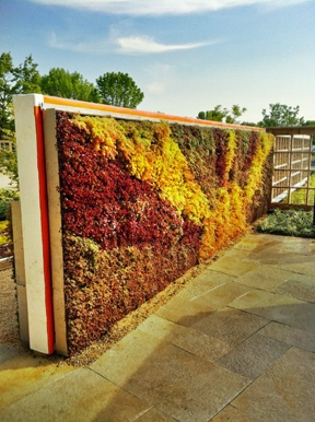 Orange Living Walls | Green Living Technologies