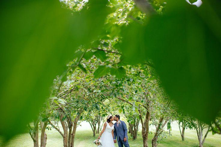 Markovina wedding photography  Auckland wedding photographer