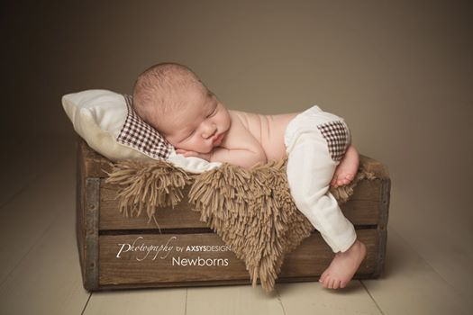 Newborn Pant and Pillow Set Ivory and brown Gingham Pattern Newborn Photo Prop…