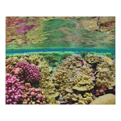 Hard Coral Carpets | Kingman Reef Pacific Ocean Faux Canvas Print - ocean side nature waves freedom design