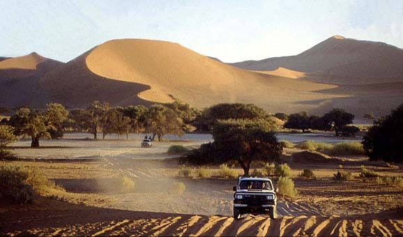 Namibia Safari Holidays - Namibian Safaris ::