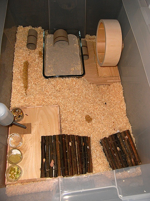 g nstiges zwerghamster gehege aus ikea samla box 80x50cm bargain dwarf hamster cage from ikea. Black Bedroom Furniture Sets. Home Design Ideas