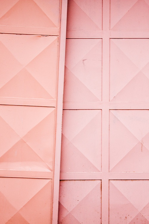 Shades Of Pink // BOXFOX