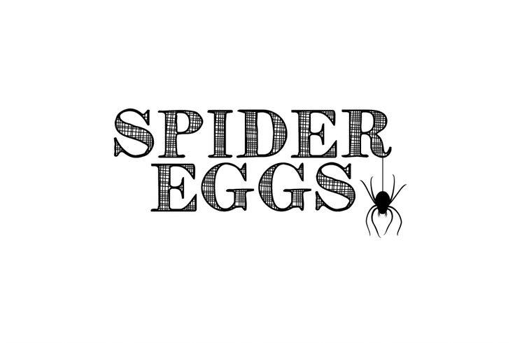Fun Halloween Food Spider Egg Donuts