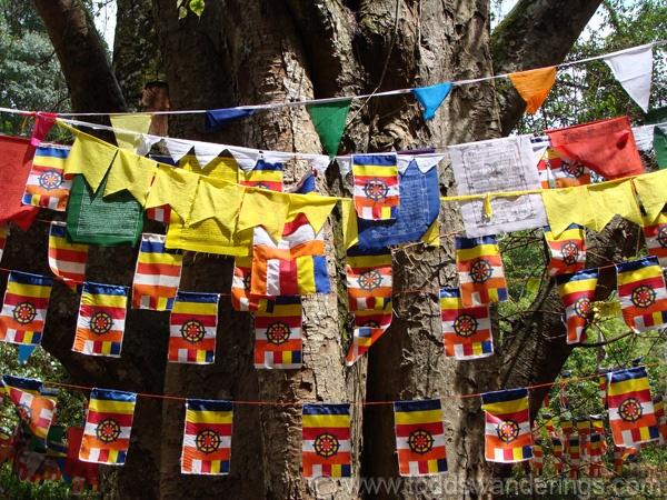 prayer flags buddhist