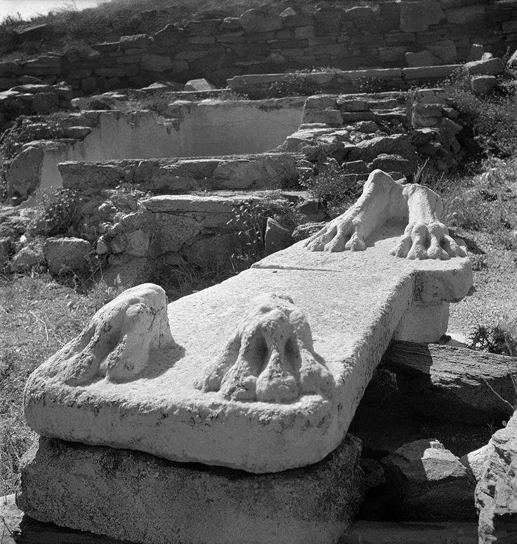 Βάση αρχαϊκού λιονταριού στο άνδηρο των λεόντων. Δήλος, 1950-1955..φωτ.Βούλα Παπαιωάννου