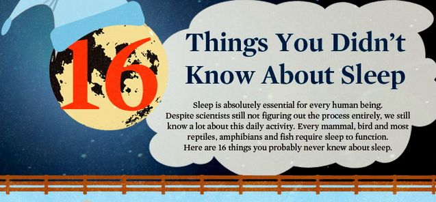 Did you know it takes 13 days before a human dies of food deprivation and only 10 to die of sleep deprivation? - 16 Amazing Facts About Sleep That Will Surely Impress You