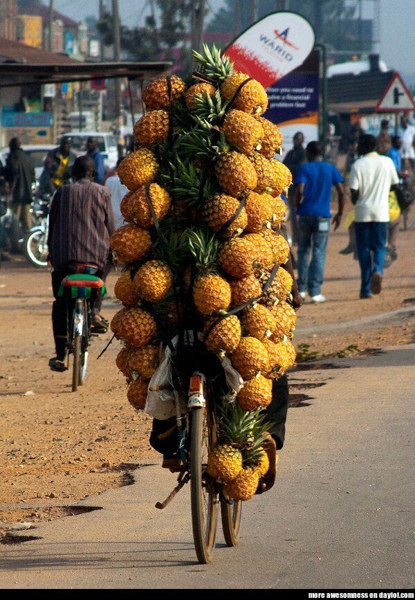 Pineapple Bike