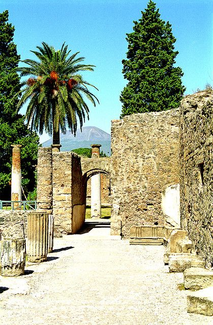 The walls of Pompeii. You can see Mt. Vesuvius in the background.