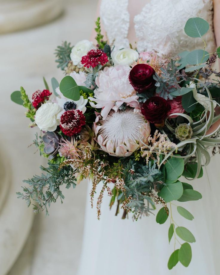 King Protea bouquet with burgundy ranunculus and scabiosa, scabiosa pods, peonies, eucalyptus and succulents by Plum Sage Flowers - Photo by Elevate Photography