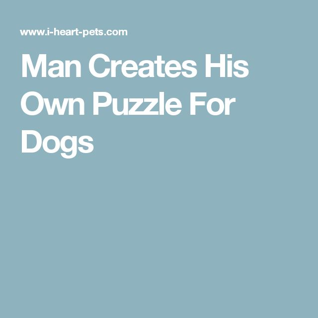 Man Creates His Own Puzzle For Dogs