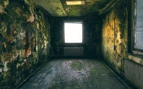 Обои стены, потолок, окна
