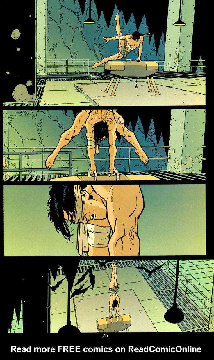 Bruce wayne training