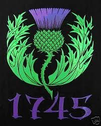 Scottish symbol - thistle.