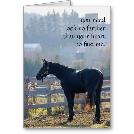 Sympathy Dog Quotes: Pet Loss Sympathy Card For Horse Lovers A Beautiful