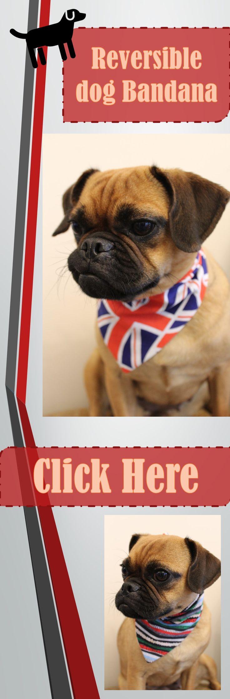 GB flag / striped reversible tie on dog bandana